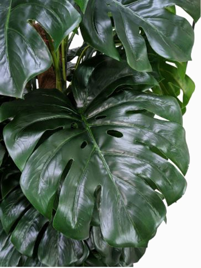 Planta Artificial Monstera 150cm  - Arrivo Mobile