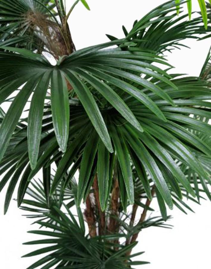 Planta Artificial Palma 150cm  - Arrivo Mobile