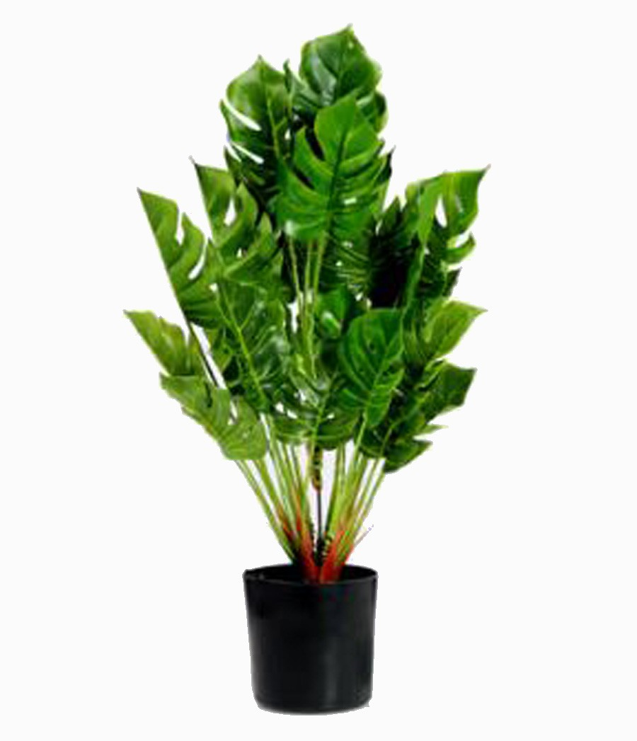 Planta Artificial Pvc Com Vaso Preto 40cm  - Arrivo Mobile