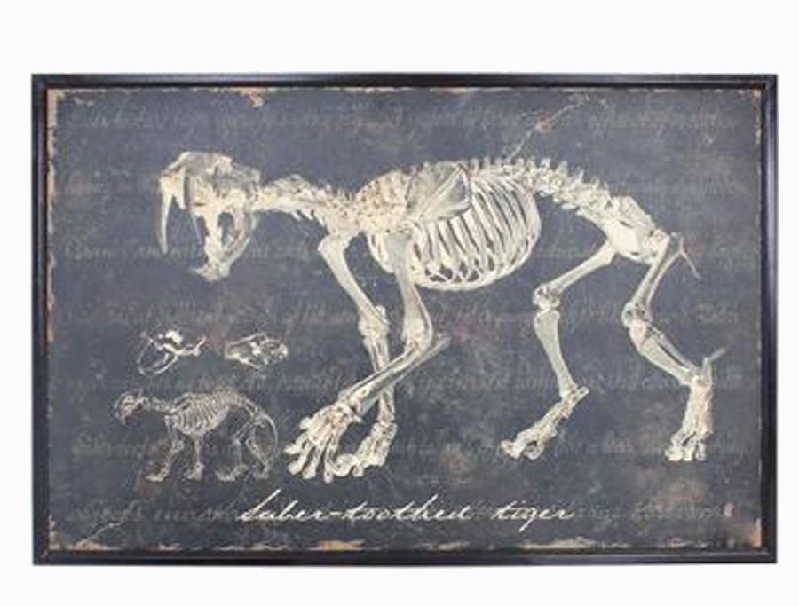 Quadro Esqueleto De Dente Desabre Oldway 80x120x3cm  - Arrivo Mobile