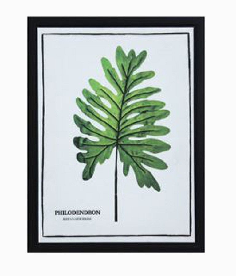Tela Impressa C/ Moldura Folhas Philodendron  - Arrivo Mobile