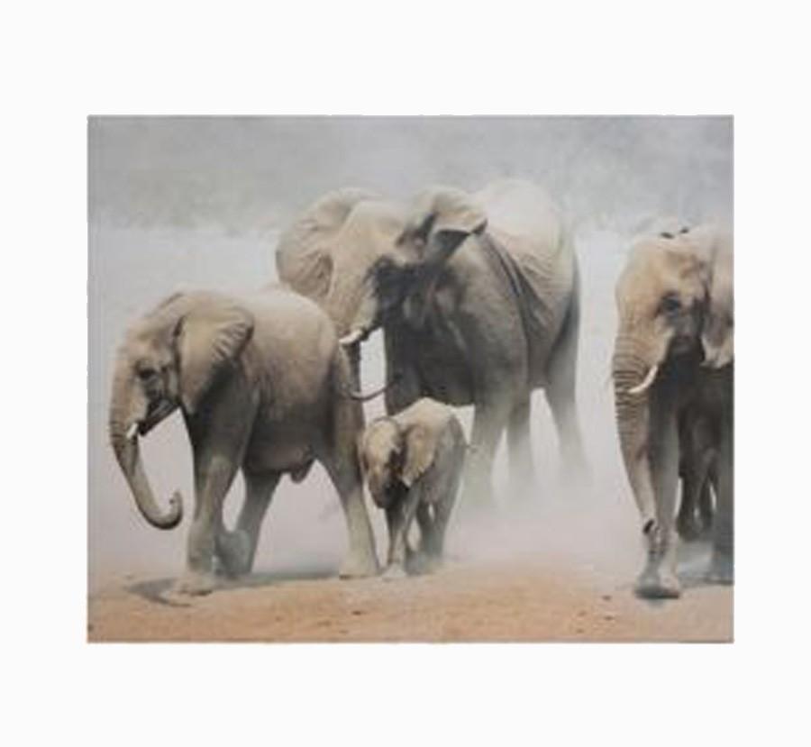 Tela Impressa Elefantes África  - Arrivo Mobile