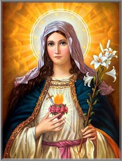 Imaculado Coração de Maria, sede a nossa salvação!