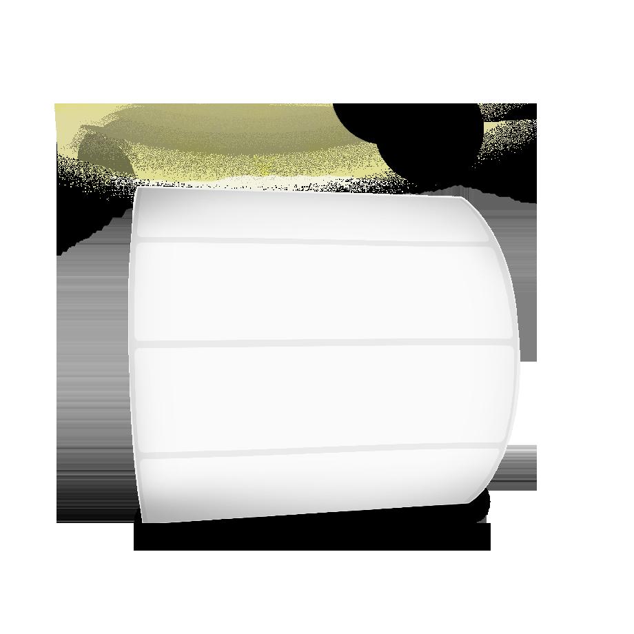 10 Rolos - Etiquetas Adesivas 100x25 mm Couchê + 5 Ribbons Cera