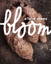 Bloom A Terra chama