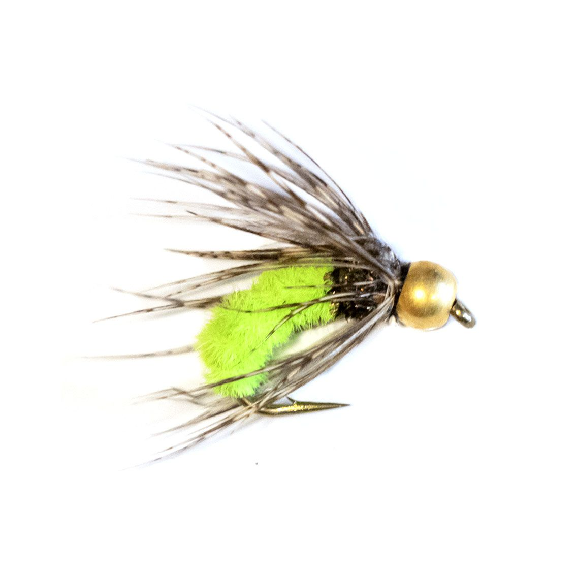 Caddis Pupa Bead Head