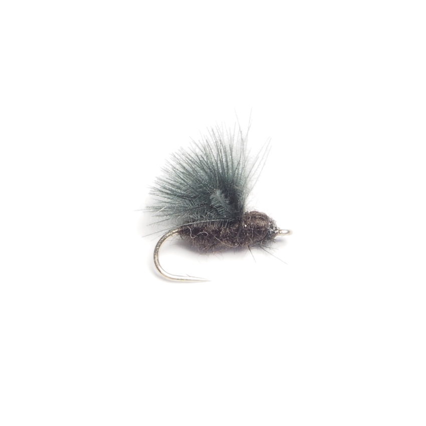 CDC Caddis (#18)