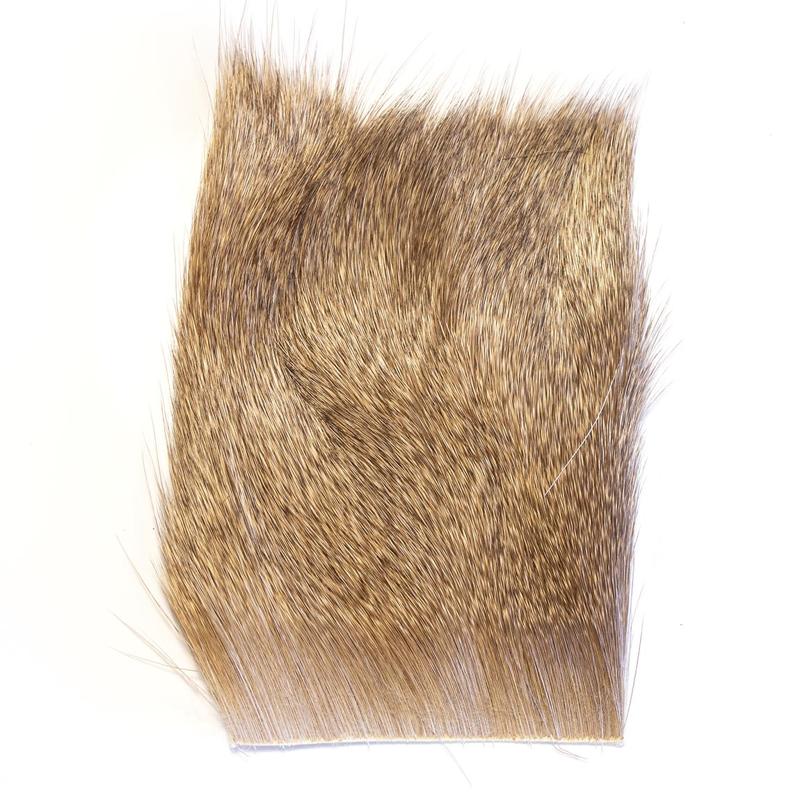 Elk Body Hair