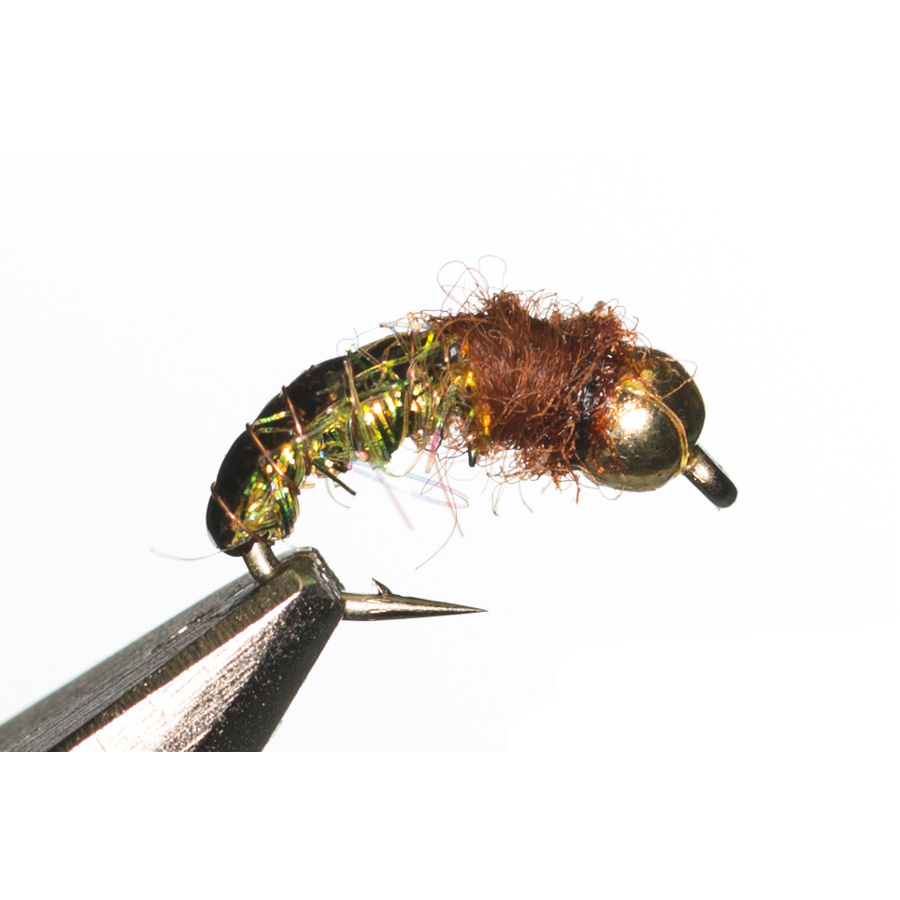 Ice Caddis