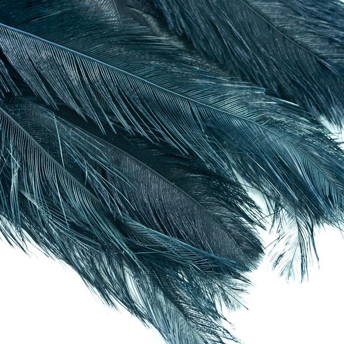 Suri Feathers XL