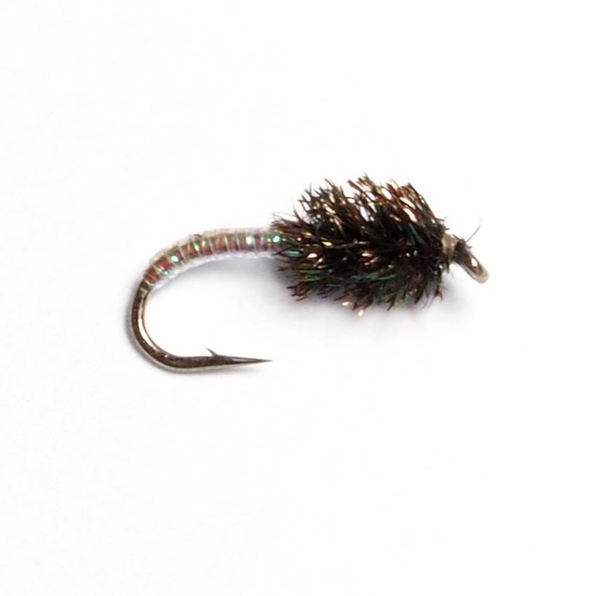 Peacock Midge