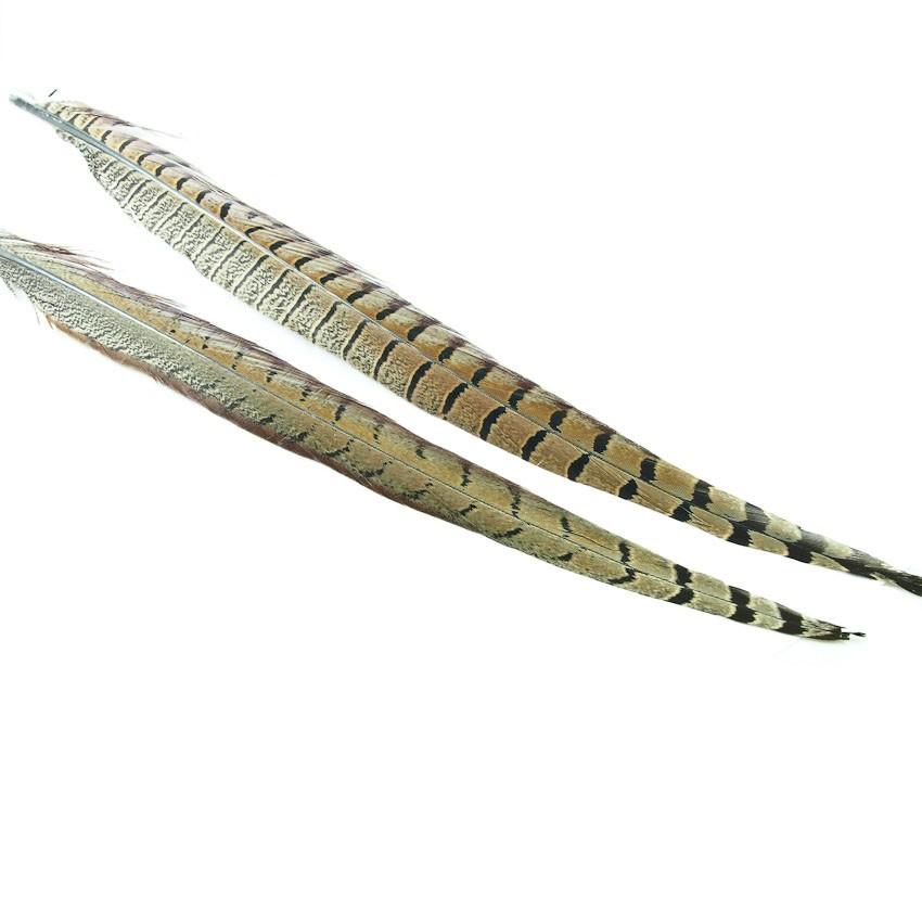 Pena de Faisão H2O Cock Pheasant Centre Tail