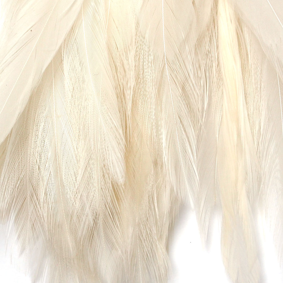 Strung Rooster Saddles Long Wapsi (Tingidas sobre Branco)