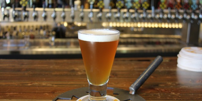 Receita Belgian Pale Ale