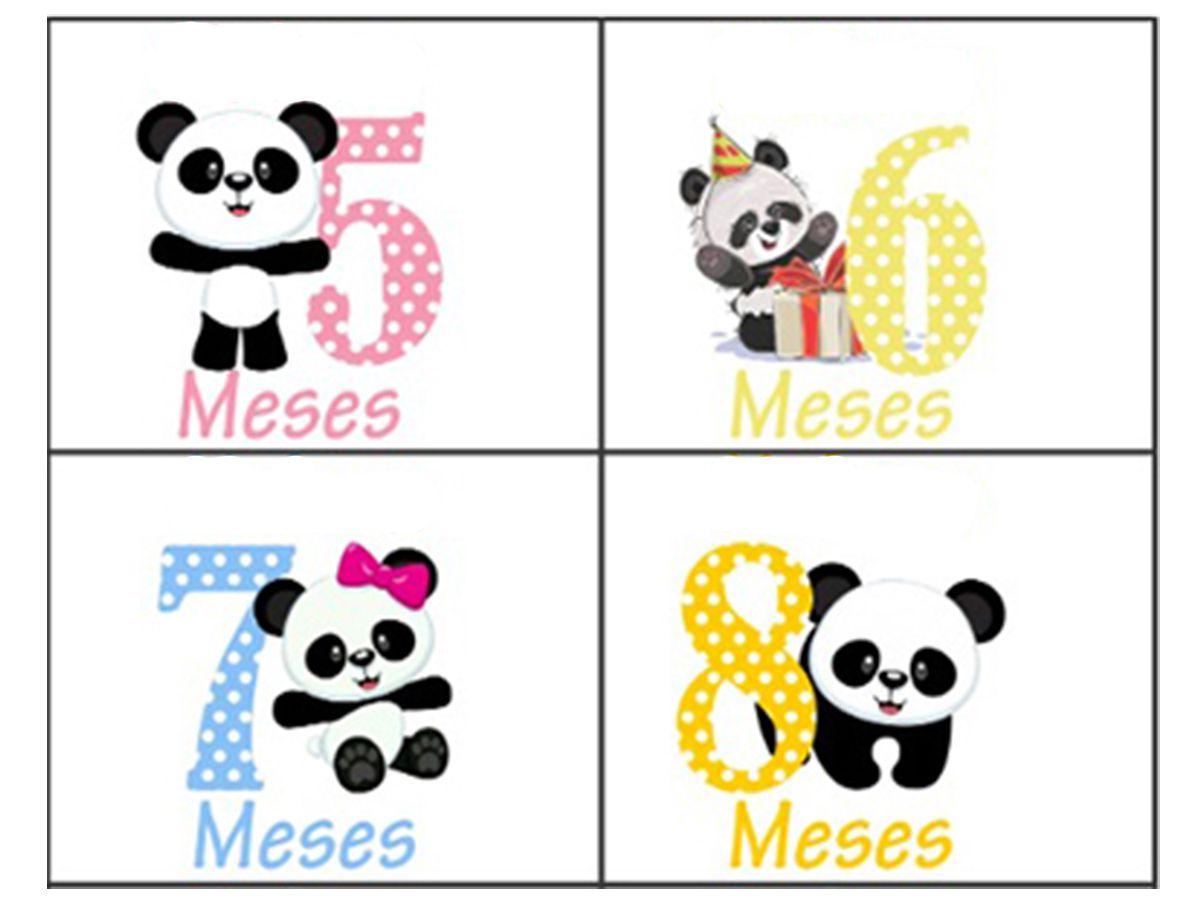 Kit body de bebê mesversario panda 12 bodies De 1 a 12 meses