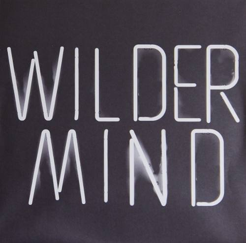 Lp Vinil Mumford & Sons Wilder Mind