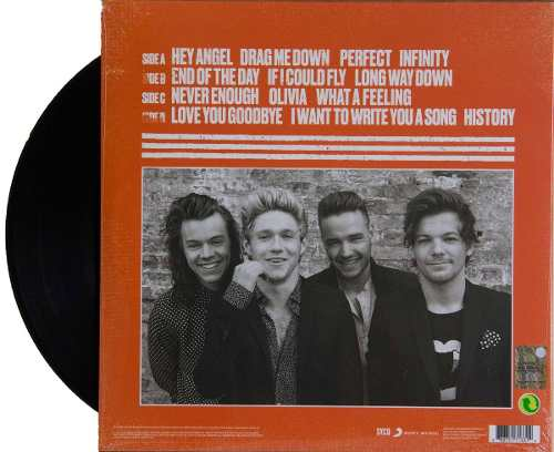 Lp Vinil One Direction Made In The AM
