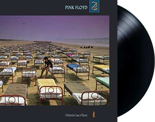 Lp Vinil Pink Floyd A Momentary Lapse Of Reason