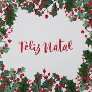 Guardanapo de Papel Feliz Natal 32,5cm - 20 folhas - Cromus Natal