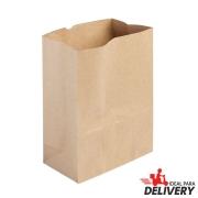 Saco de Papel Kraft Ref 5799 - 22x13,5x29,5cm - 10 unidades - WMA