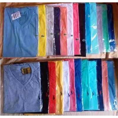 KIT C/ 40 Camisetas Gola V Masculinas Diversas Marcas