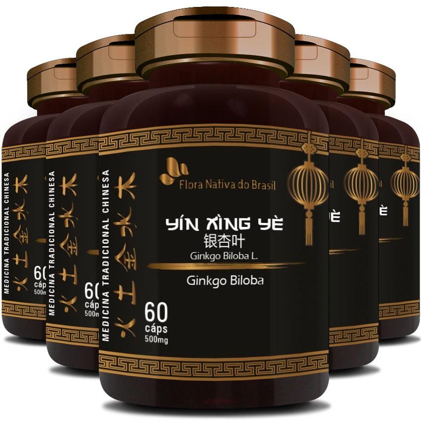 Ginkgo Biloba (Bai Guo) 500mg - O Legítimo - 5 Potes (300 cáps.)