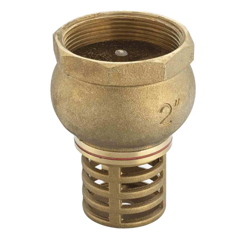 Válvula de Sucção para Fundo de Poço 1' 25,4mm Liege