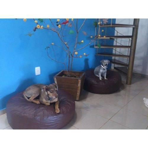 Puff Cama Pet Cão Gato Couro Ecológico Impermeável Tamanho P