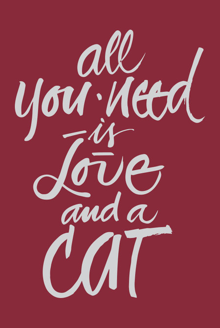 Casaquinho All you need is love and a cat