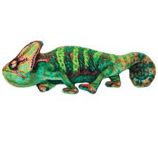 Iguana Jackson Galaxy