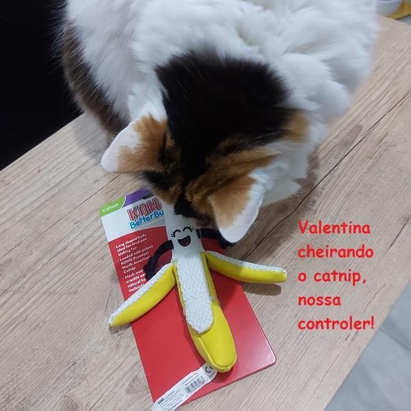 Kong Banana