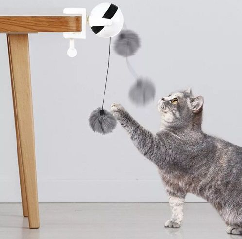 Pompom Eletrônico
