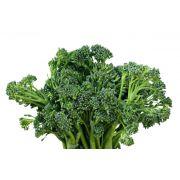 Brócolis Orgânico Lourenço
