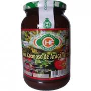 DOCE CREMOSO DE ARAÇÁ VERMELHO ORGÂNICO 700G