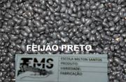 Feijão Preto  1KG  - Escola Milton Santos