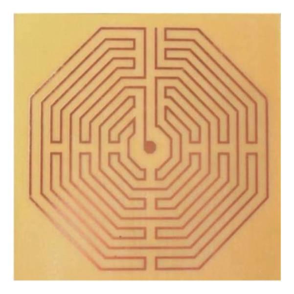 Labirinto Damiens - fen.  - Zots