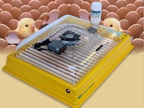 Chocadeira Profissional Ip 130 Automática + Ovoscópio!