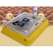 Chocadeira Ip 130 Ovos, Digital, Profissional, Ar Forçado