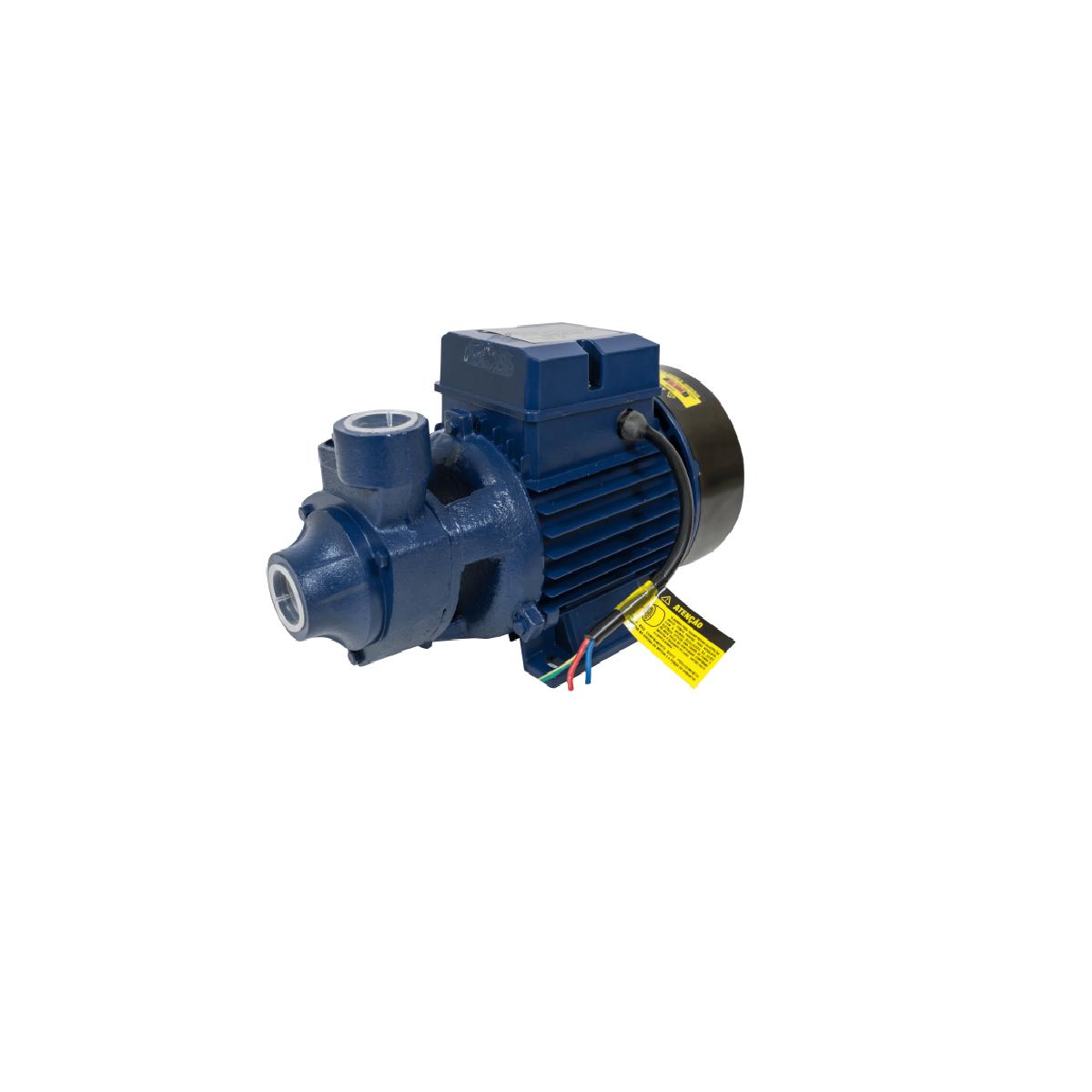 Motobomba Elétrica 0,5cv Bivolt ICS 50-AB- Eletroplas