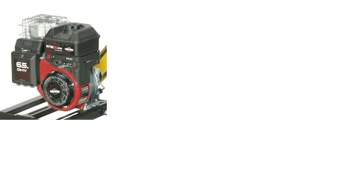 Triturador Forrageiro 6,5Hp TRF-300G Trapp