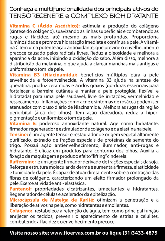 Folder Vitamina C