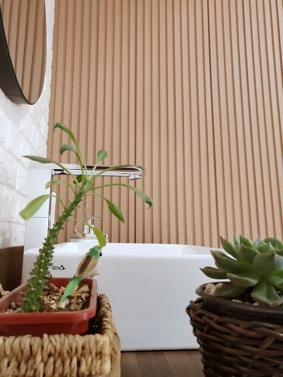 Painel Ripado Ecológico RENO Faia - Novidade placa com 0,46m²