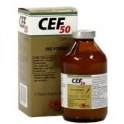 Cef 50 Ceftiofur Uso Veterinário Injetável 100ml