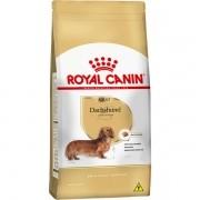 Ração Royal Canin Dachshund - Cães Adultos - 7,5kg