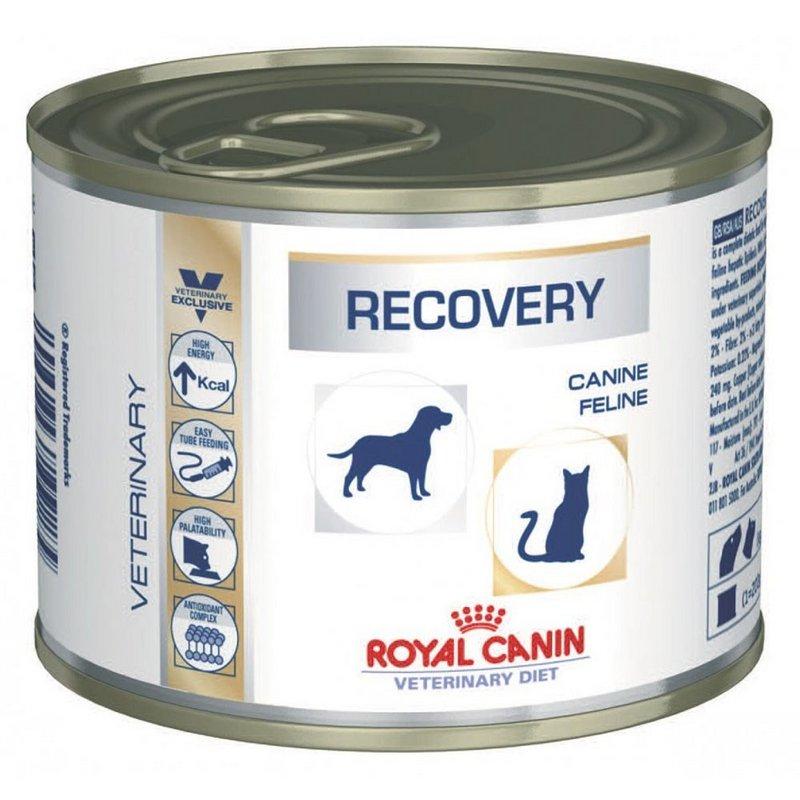 Alimento Úmido Recovery Lata Royal Canin Cães E Gatos 195g