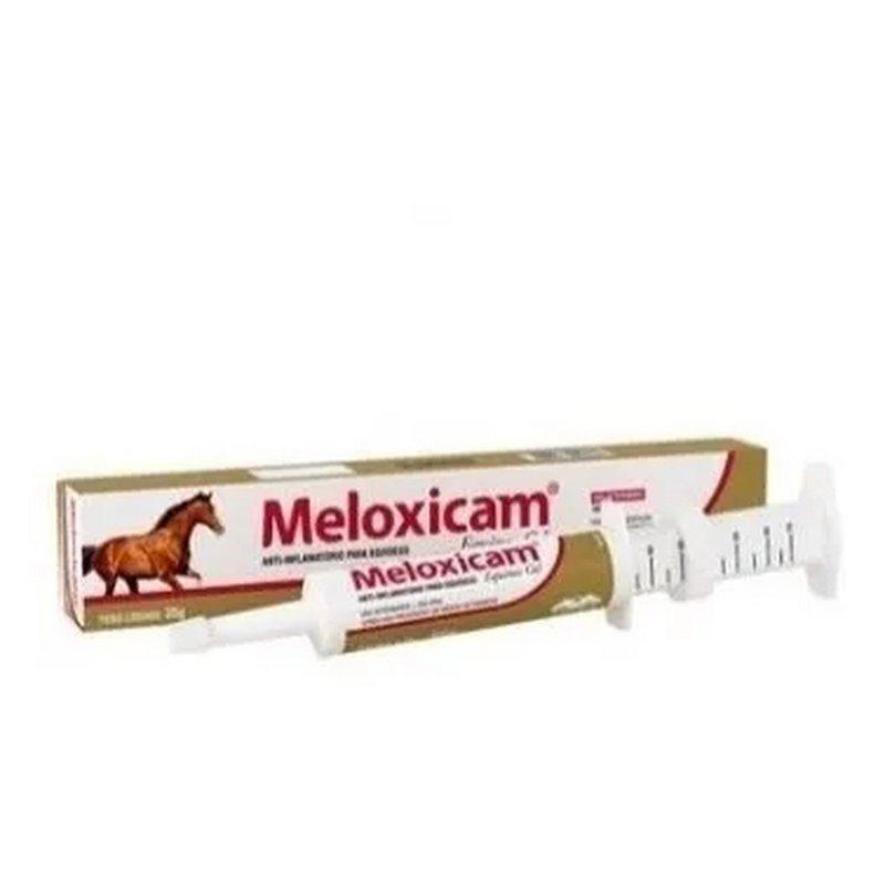Meloxicam Gel Equinos 35 Gr - Vetnil