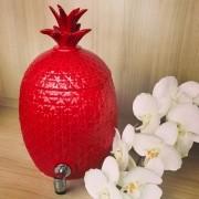 Suqueira Abacaxi Vermelha (5 litros)