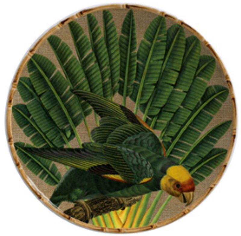 Sousplat Aves do Brasil (6 Unidades)