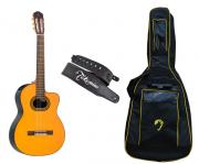 Violão Elétrico Nylon Clássico Takamine GC6 CE Natural + Bag Extra Luxo e Correia