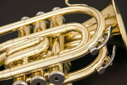 Trompete Eagle Pocket Tp520 Em Sib Laqueado Com Case